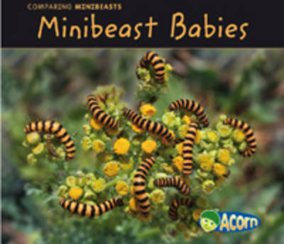 Minibeast Babies by Charlotte Guillian
