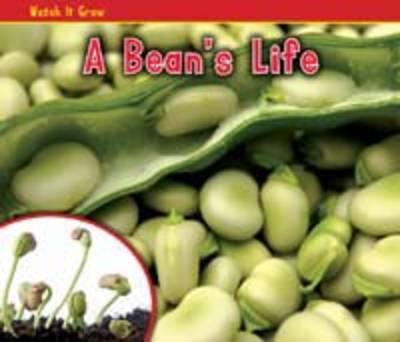 A Bean's Life by Nancy Dickmann