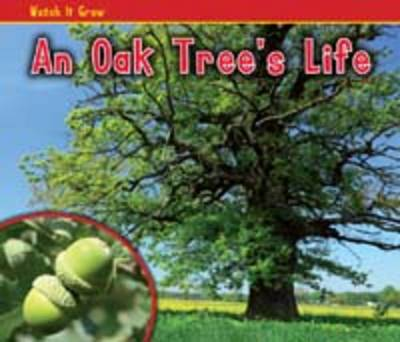 An Oak Tree's Life by Nancy Dickmann