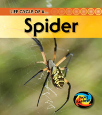 Life Cycle of a Spider by Ron Fridell, Patricia Walsh