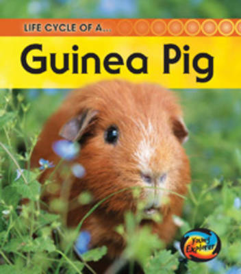 Life Cycle of a Guinea Pig by Angela Royston
