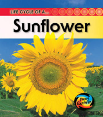 Life Cycle of a Sunflower by Angela Royston