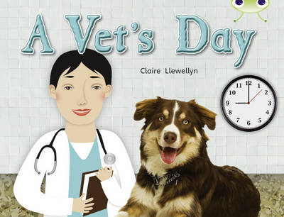 A Vet's Day (Green B) NF by Claire Llewellyn