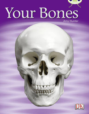 Your Bones Non-Fiction Lilac by Amy Hunter