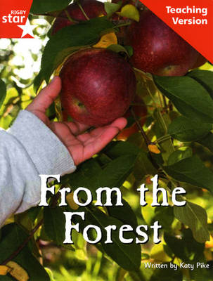 Fantastic Forest Pink Level Fiction From the Forest Teaching Version by Lisa Thompson
