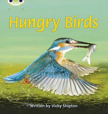 Phonics Bug Non-Fiction Set 23 Hungry Birds by Vicky Shipton