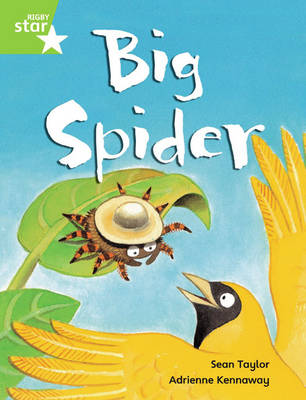Rigby Star Guided Phonic Opportunity Readers Green: Big Spider Pupil Book (Single) by