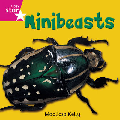 Rigby Star Independent Reception/P1 Pink Level: Minibeasts (3 Pack) by