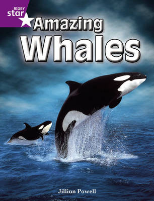 Rigby Star Independent Year 2 Purple Non Fiction: Amazing Whales Single by