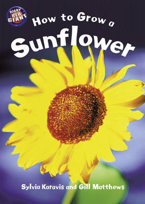 Star Shared: How to Grow a Sunflower/Hyacinth Big Book by Sylvia Karavis, Gill Matthews