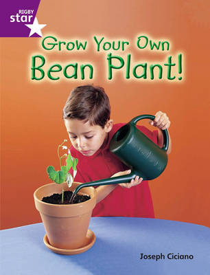 Rigby Star Guided Quest Purple: Grow Your Own Bean Plant! by