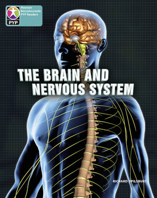 PYP L10 Brain and nervous system 6PK by