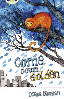 BC Brown A/3C Come Down, Golden by Diana Noonan