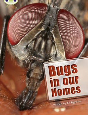 BC NF Lime A/3C Bugs in Our Homes by Jill Eggleton