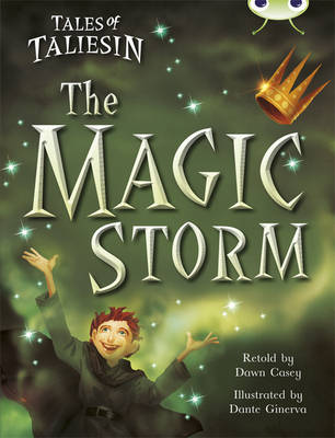 Tales of Taliesin: The Magic Storm Gold B/2b by Dawn Casey