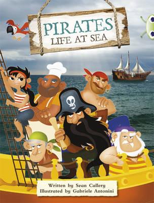 A Pirate's Life Non-Fiction Purple B/2c by Sean Callery