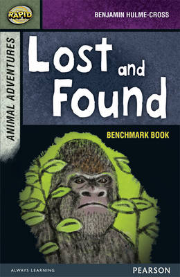 Rapid Stage 7 Assessment Book: Lost and Found by Benjamin Hulme-Cross