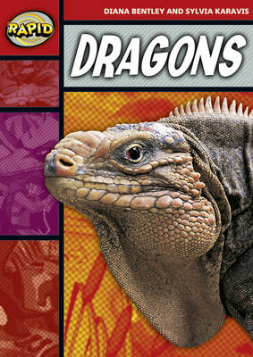 Rapid Stage 2 Set B: Dragons (Series 1) by