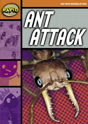 Rapid Stage 4 Set B Reader Pack: Ant Attack (Series 1) by Haydn Middleton