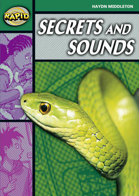 Rapid Stage 5 Set B: Secrets & Sounds (Series 2) by