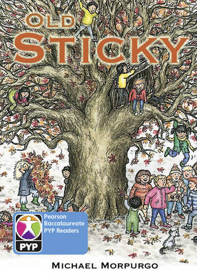 Primary Years Programme Level 7 Old Sticky 6Pack by