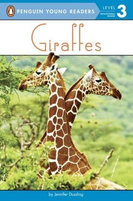 Giraffes by Jennifer Dussling