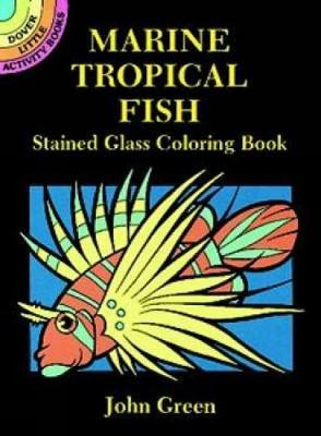 Marine Tropical Fish Stained Glass Coloring Book by John Green
