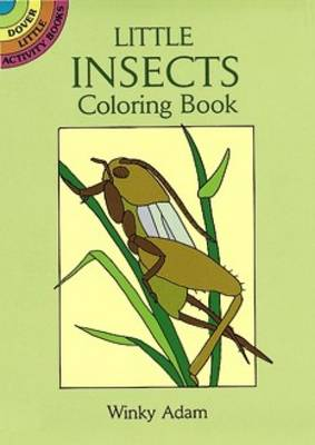 Little Insects Coloring Book by Winky Adam