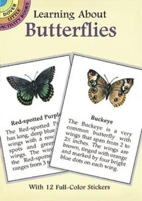 Learning About Butterflies by Jan Sovak
