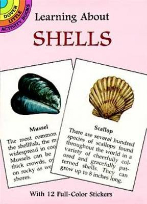 Learning About Shells by Sy Barlowe