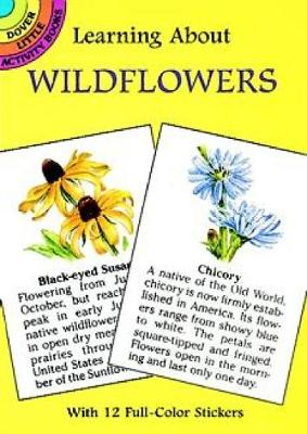 Learning About Wildflowers by Dot Barlowe