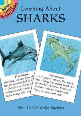 Learning about Sharks by Jan Sovak