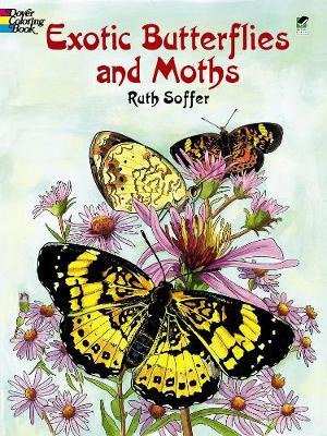 Exotic Butterflies and Moths by Ruth Soffer