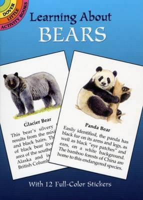 Learning About Bears by Ruth Soffer