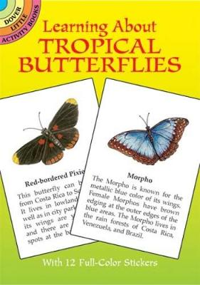 Learning About Butterflies by Ruth Soffer