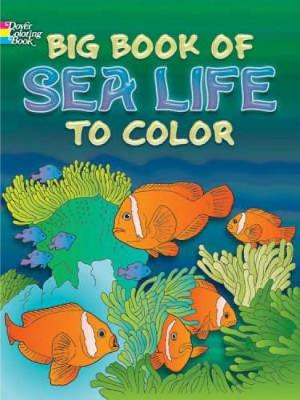 Big Book of Sea Life to Color by Ruth Soffer, Anthony D'Attilio, Lucia De Leiris