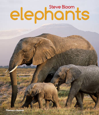 Elephants A Book for Children by Steve Bloom, David Henry Wilson