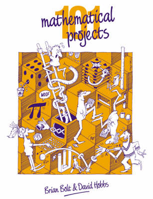 101 Mathematical Projects by Brian Bolt, David Hobbs