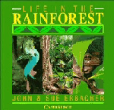 Life in the Rainforest by John Erbacher, Sue Erbacher