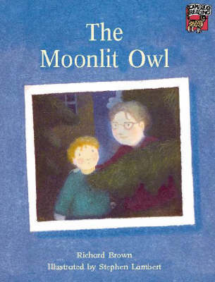 The Moonlit Owl by Richard Brown