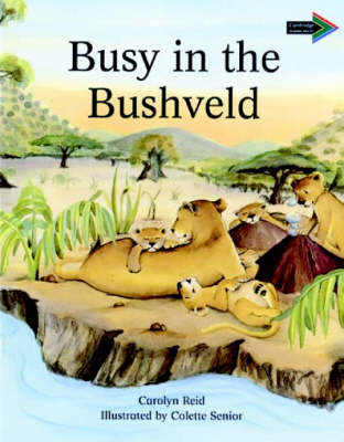 Busy in the Bushveld South African edition by Carolyn Reid