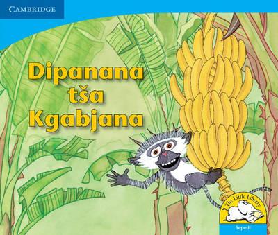 Baby Monkey's Bananas Sepedi Version by Sue Hepker