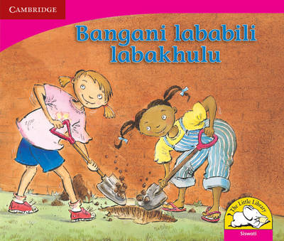 Little Library Literacy: Two Best Friends Siswati Version by Kerry Saadien-Raad