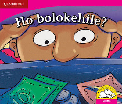 Little Library Literacy: is it Safe? Sesotho Version by Reviva Schermbrucker