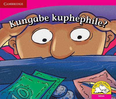 Little Library Literacy: is it Safe? Isizulu Version by Reviva Schermbrucker