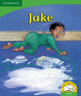 Little Library Life Skills: Jake Sepedi Version by Janet Hurst-Nicholson