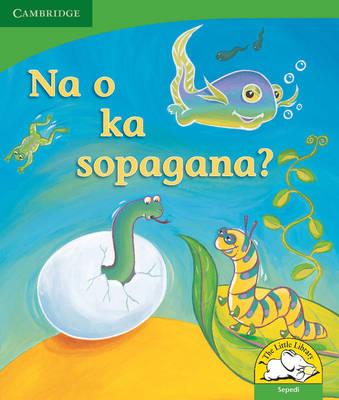 Na o ka solopana? by Kerry Saadien-Raad