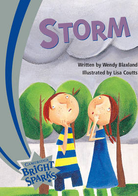 Bright Sparks: The Storm by Wendy Blaxland