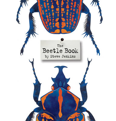 The Beetle Book by Steve Jenkins