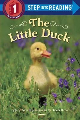Little Duck by Judy Dunn